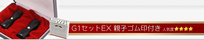 会社設立G1セットEX