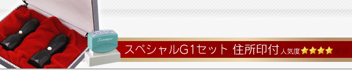 会社設立スペシャルG1セット
